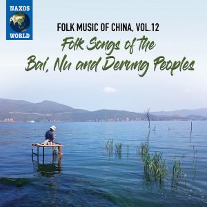 FolkMusicOfChinaVol12