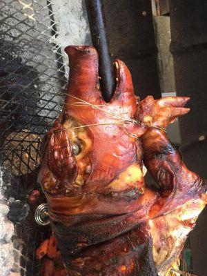 Jennifer Stevenson's pig roast 2016 credit: ZombiLena